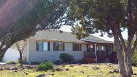 Home for sale: 1918 Silver Lake Blvd., Show Low, AZ 85901