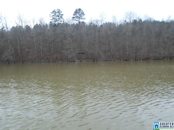 1517 Co Rd. 3782, Arley, AL 35541 Photo 7