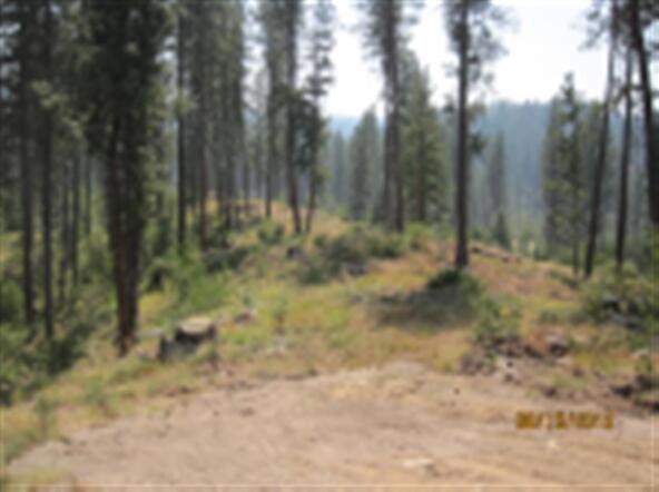 Lot 1 Elk Run Sub, Idaho City, ID 83631 Photo 2