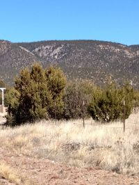 Home for sale: . Fort Lone Tree Rd., Capitan, NM 88316