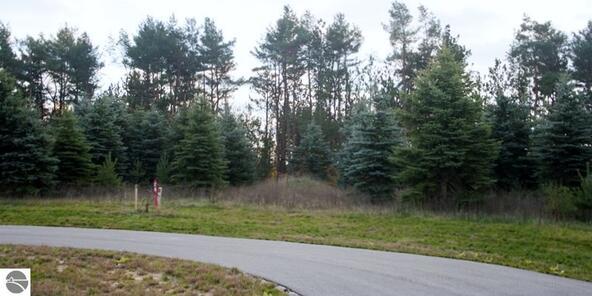 0019 Lipp Farm Rd., Benzonia, MI 49616 Photo 5