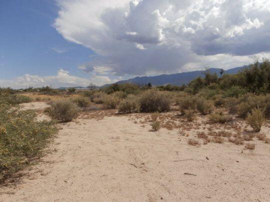 5887 S. Hwy. 191, Safford, AZ 85546 Photo 30