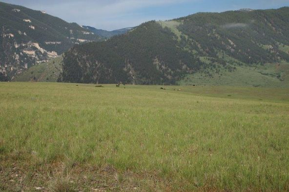Eagle Ridge Trl, Dayton, WY 82836 Photo 57