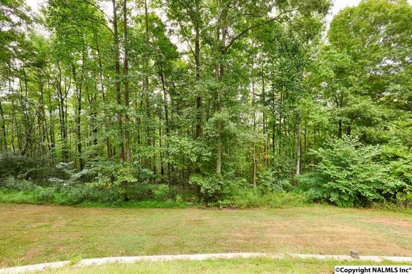5730 Ruth Mountain Rd., Arab, AL 35016 Photo 32
