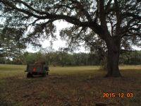 Home for sale: Tbd Government Farm Rd., Monticello, FL 32344