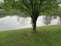Home for sale: 2559 B-Creek Rd., Corbin, KY 40701