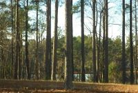 Home for sale: 366 Falling Water Rd., Spring Lake, NC 28390