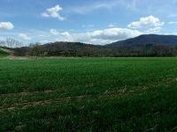 Home for sale: Tbd Carsonville Rd., Elk Creek, VA 24326