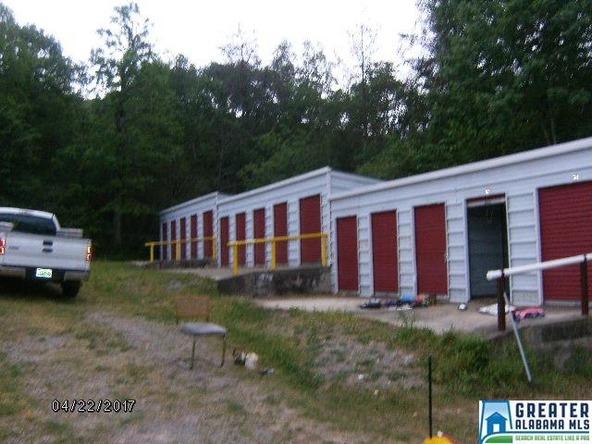 30 Valley Trail Ln., Warrior, AL 35079 Photo 25