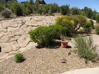 Home for sale: 86 N. French Dr., Prescott, AZ 86303