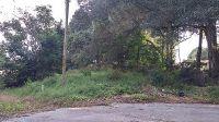 Home for sale: 404 Acorn Cir., Fruitland Park, FL 34731