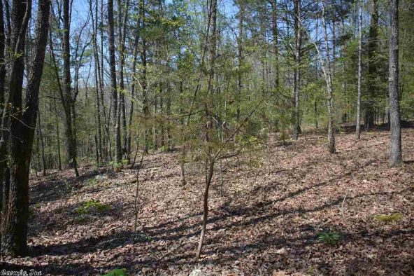 4.5 Ac Brownsville Rd., Greers Ferry, AR 72067 Photo 2