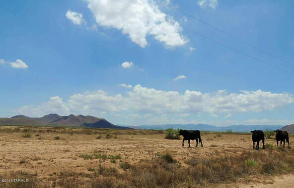 800 Ac Off Kansas Settlement, Willcox, AZ 85643 Photo 14