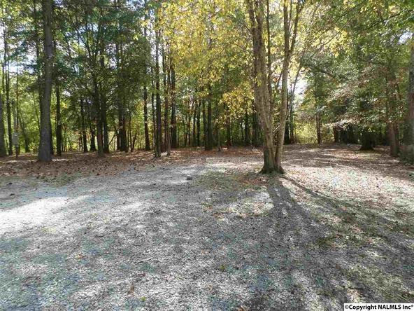 7770 County Rd. 48, Cedar Bluff, AL 35959 Photo 13