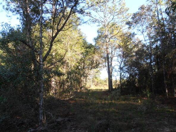 9268 Soldier Creek Rd., Lillian, AL 36549 Photo 1