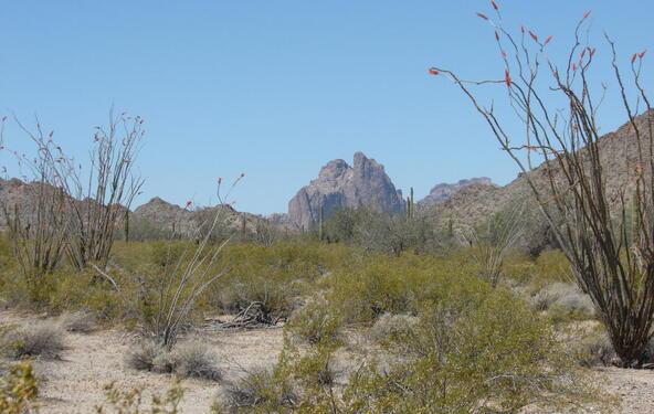 3xx N. 557th Avenue, Tonopah, AZ 85354 Photo 14
