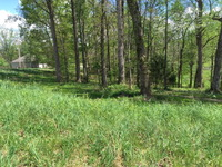 Home for sale: Lot 16 Plantation Dr., Sparta, TN 38583