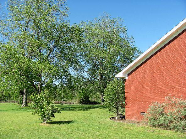 1887 County Rd. 49, Dawson, AL 35963 Photo 28
