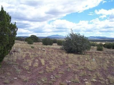 204 Juniperwood Rnch Un 3 Lot 204, Ash Fork, AZ 86320 Photo 10