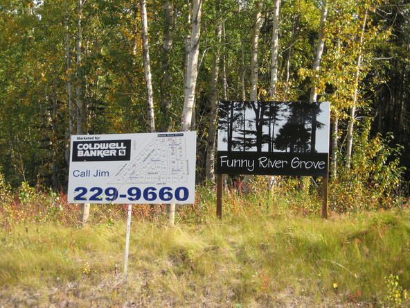 L6 B4 Fairweather Loop, Soldotna, AK 99669 Photo 1