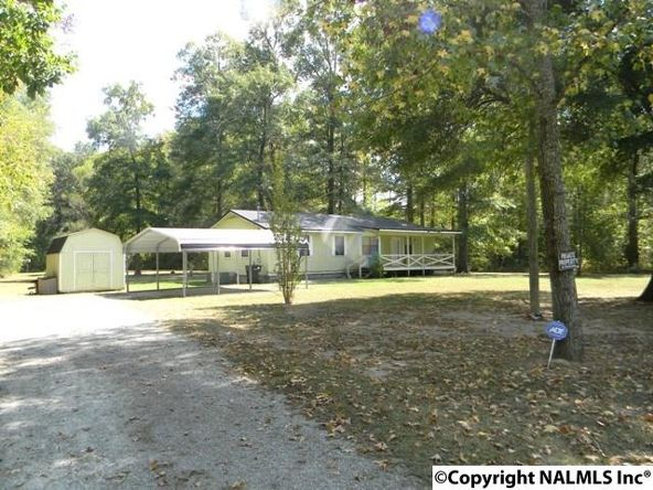 668 Jones Chapel Rd., Piedmont, AL 36272 Photo 8