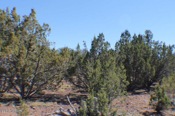 8 Acres Off Of Acr N. 3114, Vernon, AZ 85940 Photo 15