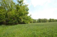 Home for sale: 00 Tritt Rd., Brownsville, TN 38012