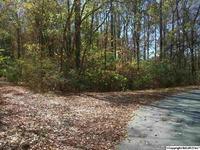 Home for sale: S. Broad St., Scottsboro, AL 35768