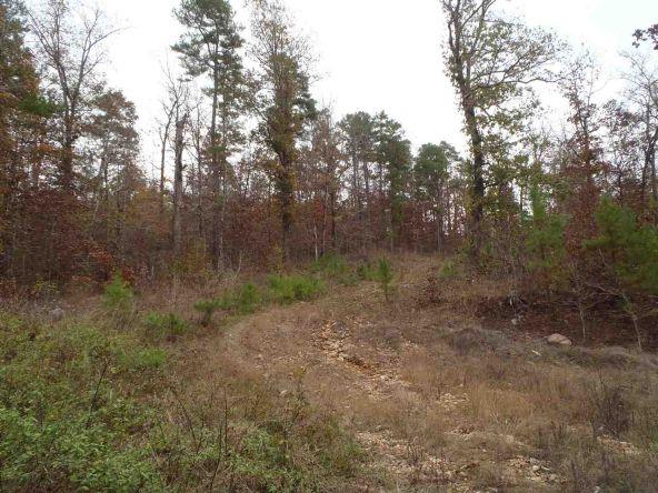 108 Buckthorn, Mountain Pine, AR 71956 Photo 16
