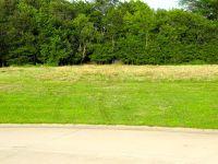 Home for sale: Tbd Tortoise Trail, Gillespie, IL 62033