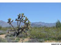 Home for sale: N2 & N2a Ernest Rd., Yucca, AZ 86438