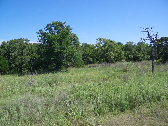 Pecan Valley Rd. Lot 10, Tecumseh, OK 74873 Photo 9