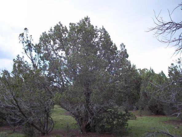 7937 N. Perrin Ln., Williams, AZ 86046 Photo 4