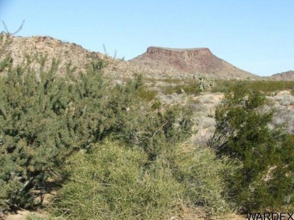 3529-A Arroyo Rd., Yucca, AZ 86438 Photo 21