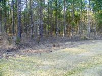 Home for sale: Lot 2 Skyland Farm Rd., Windsor, SC 29853
