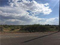Home for sale: 14298 Simpson Rd., Clint, TX 79836