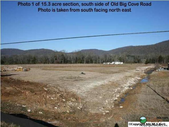 5703 U S. Hwy. 431, Brownsboro, AL 35741 Photo 1