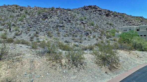 13829 S. Canyon Dr., Phoenix, AZ 85048 Photo 4