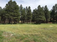 Home for sale: 502 Lots A Luck Ln., Mormon Lake, AZ 86038