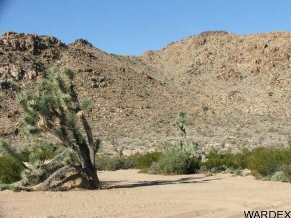 3529-A Arroyo Rd., Yucca, AZ 86438 Photo 4