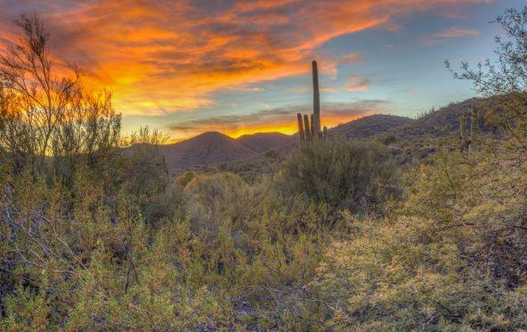 38940 N. 54th St., Cave Creek, AZ 85331 Photo 35