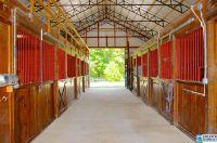 Home for sale: 1161 Camp Branch Cir., Alabaster, AL 35007