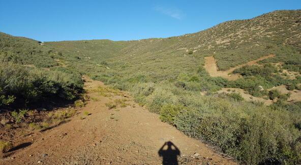 20 Freeport, Dewey, AZ 86327 Photo 79