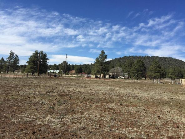 3602 E. Mountain Man Trail, Williams, AZ 86046 Photo 29