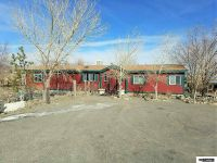 Home for sale: 2315 Adriann Avenue, Silver Springs, NV 89429