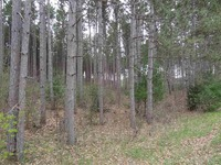 Home for sale: Evergreen E. Dr., Waupaca, WI 54981
