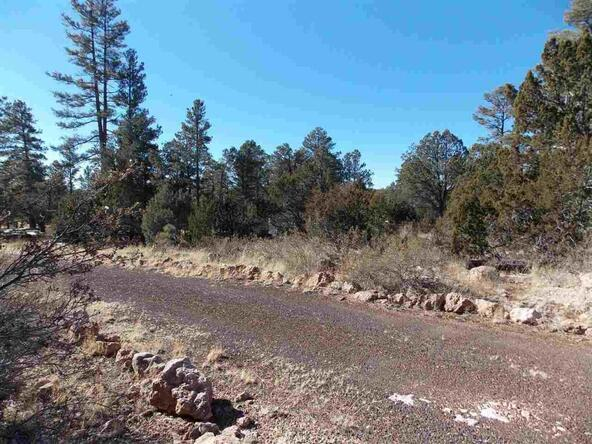 2845 Mustang Trail, Overgaard, AZ 85933 Photo 3