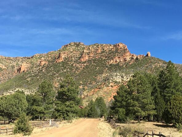 220 W. Zane Grey Cir., Christopher Creek, AZ 85541 Photo 43