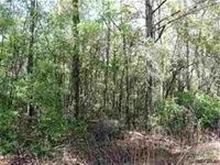 Home for sale: 6 B Parramore Shores Rd., Tallahassee, FL 32310