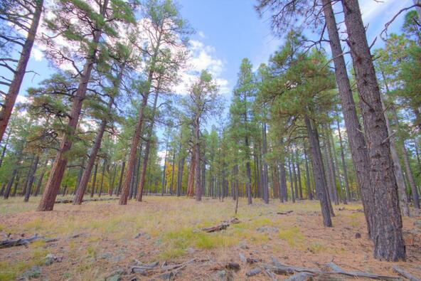 8100 W. Dk Ranch Rd., Flagstaff, AZ 86005 Photo 23